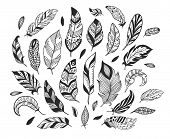 Hand Drawn Feathers. Sketch Bird Feather, Retro Artistic Drawing Ink Pen And Birds Feathering Vector poster
