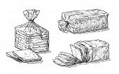 Collection Of Natural Elements Of Sliced Toast Bread And Cellophane Package Sketch poster