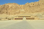 image of hatshepsut  - Temple of queen Hatshepsut - JPG