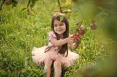 Freshness, Fresh Fruit, Food Freshness Youth Growth Nutrition poster