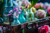 Flower Collection In Vintage Glass Bottles Close-up. Botany And Perfume Header On A Dark Background  poster