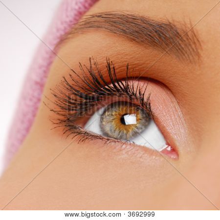 Long, Black And  Beauty Eyelashes