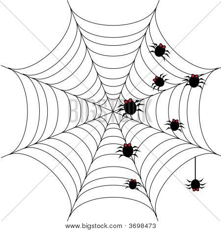 Halloween Background With Spider Web 1