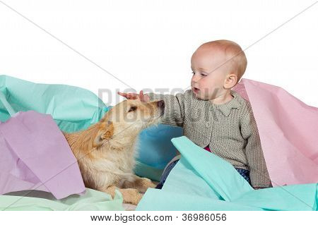 Baby Patting The Family Dog