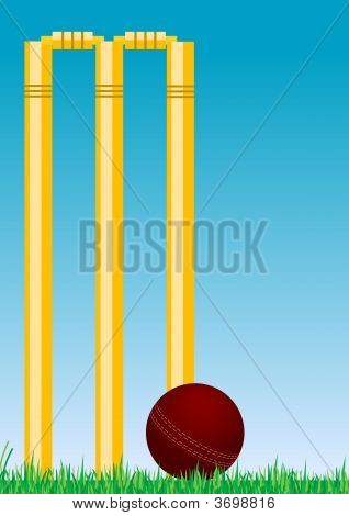 Cricket Ball In The Grass 2