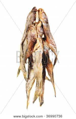 Dried Bullhead (goby)  Isolated  On  White
