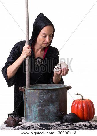 Cena de Halloween com a bruxa, abóbora, Caveira, ratos