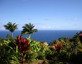 image of garden eden  - Garden of Eden nature park on Maui - JPG