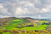 picture of apennines  - Olive Groves on the Slopes of the Apennine Mountains Italy - JPG