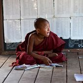 Little Buddhist monk
