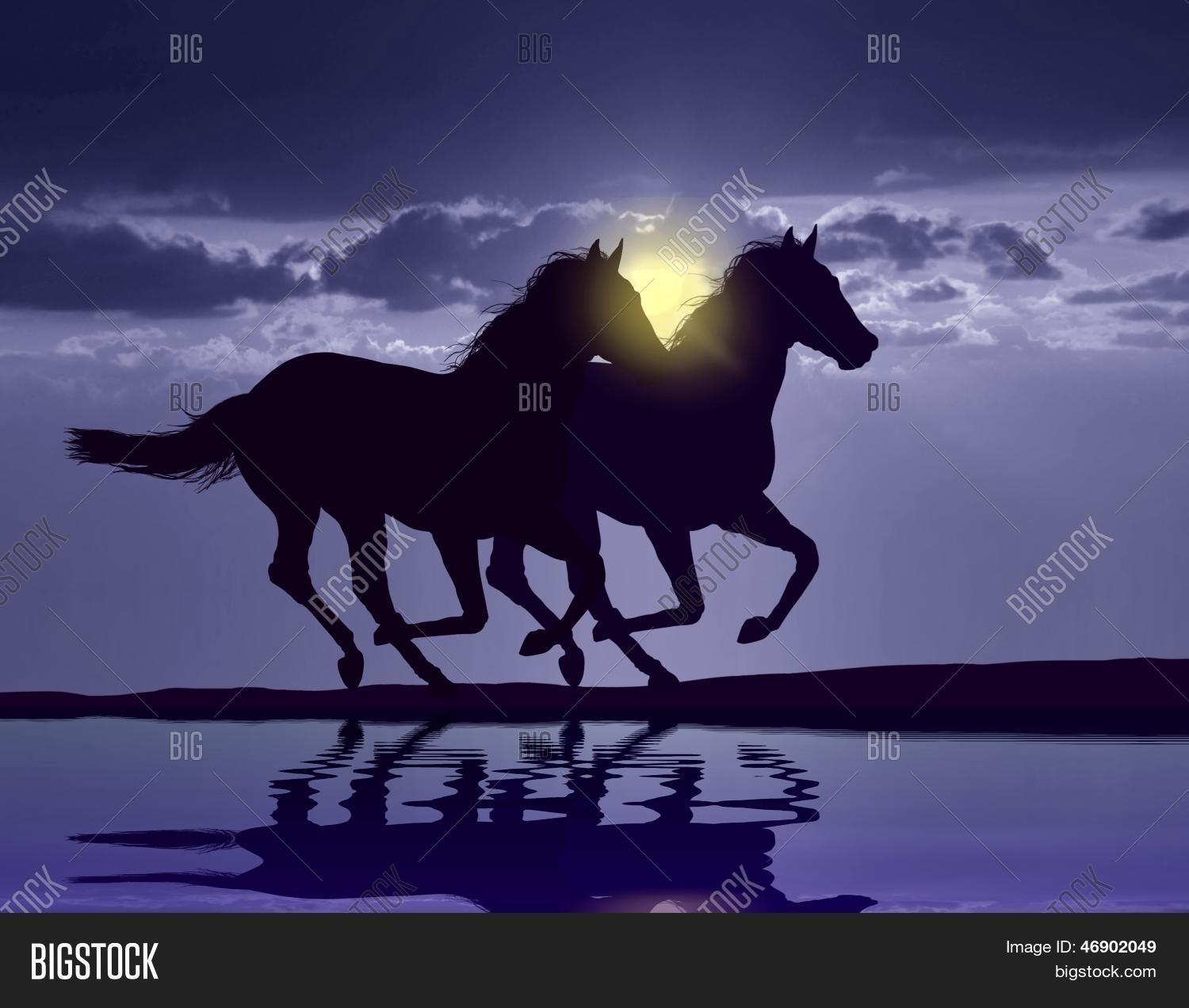 Wild horses running in the sunset