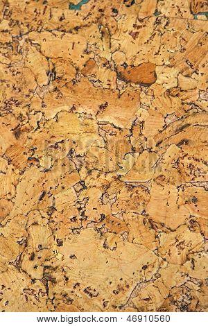 Cork Panel