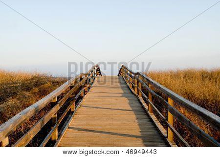 Wood Brige To Atlantic Ocean