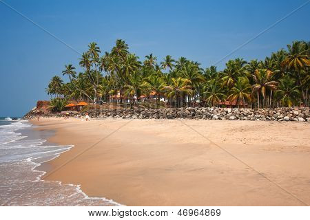 Вид на пляж Варкала, отель beach расположен в кокосовой роще за бруствер