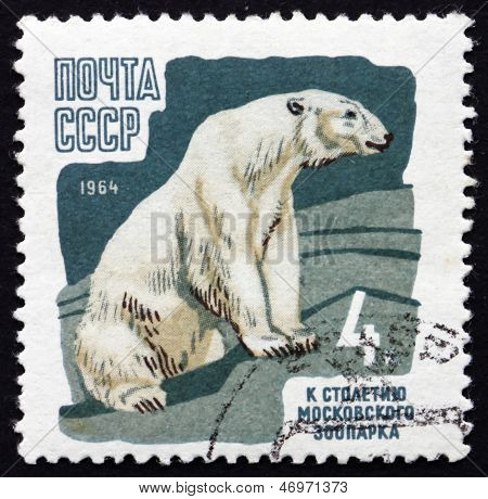 Postage Stamp Russia 1964 Polar Bear, Animal