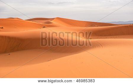 Sand Dunes Of Erg Chebbi, Morocco