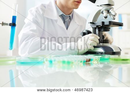 Young clinician looking into microscope in laboratory