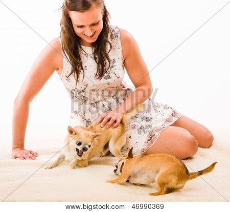 Woman And Dogs
