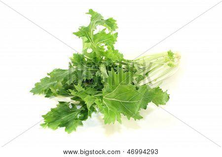 Green Turnip Greens