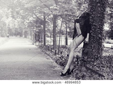 Blonde Beauty Posing In Park