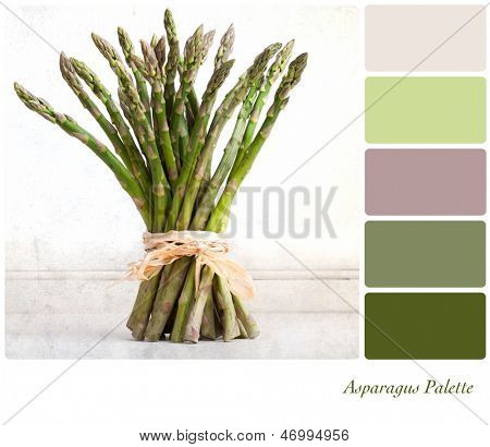 A bundle of asparagus tied with raffia on a vintage style background,  in a colour palette with complimentary colour swatches.