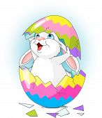 stock photo of easter bunnies  - Easter bunny jumping out from broken egg - JPG