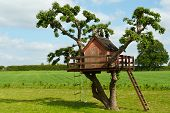 stock photo of tree house  - Beautiful creative handmade tree house for kids in backyard of a house - JPG