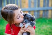 image of hairy  - children girl kissing her puppy chihuahua doggy on the wood fence - JPG