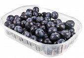 blueberry in plastic transparency container box, isolated over a white background