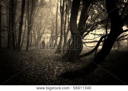 Man walking in a dark creepy eerie forest with fog and strange dark trees