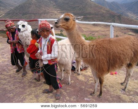 Peruvian Children In The Sacred Valley