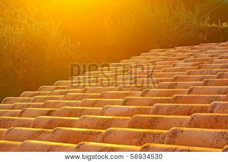 Roof At Sunset