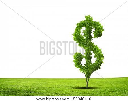 Conceptual image of green plant shaped like dollar symbol