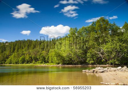 Lake And Trees In Northern Norway