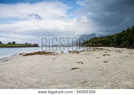 Norwegian Seaside During Lowtide