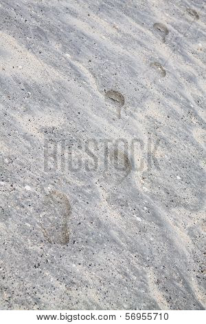 Steps In The Untouched Beach Sand