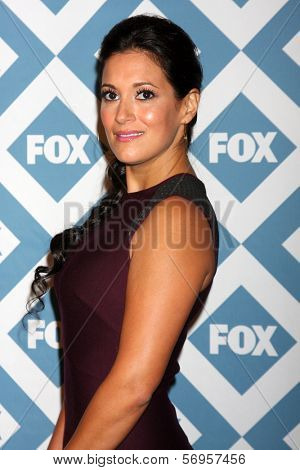 LOS ANGELES - JAN 13:  Angelique Cabral at the FOX TCA Winter 2014 Party at Langham Huntington Hotel on January 13, 2014 in Pasadena, CA