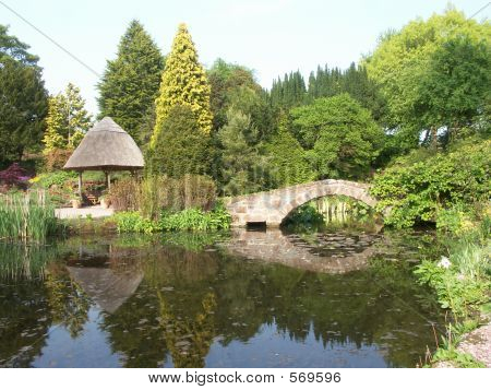 Ness Gardens, Wirral - Pond And Bridge