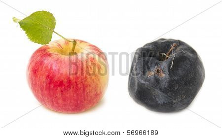 Fresh red apple and rotten apple old.