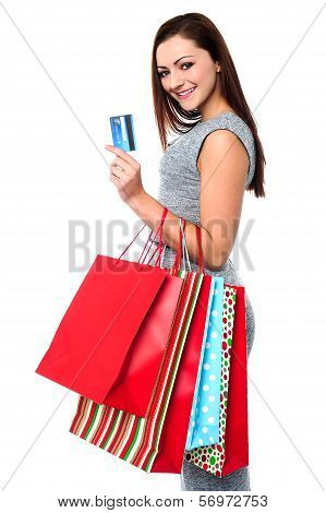 Fashionable Female With Shopping Bags