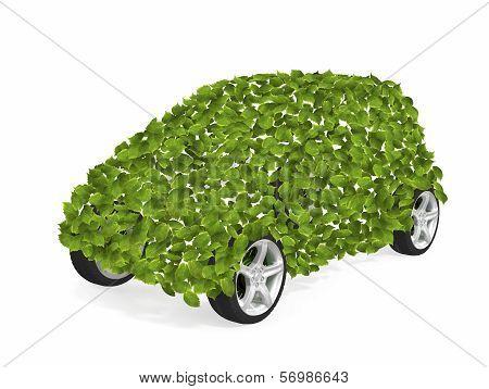 Green Leaves Car