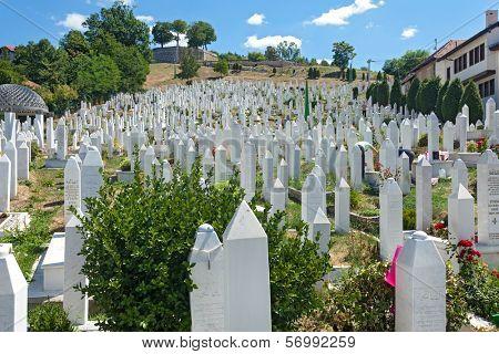 SARAJEVO, BOSNIA AND HERZEGOVINA - AUGUST 12, 2012: Hillview of Martyr´s memorial cemetery Kovaci in the centre of Sarajevo.