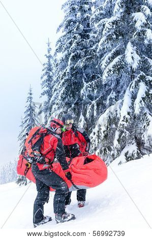 Ski patrol carry injured person skier in rescue stretcher snow