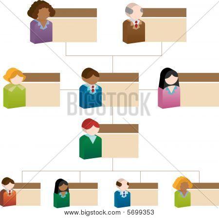 Gráfico de caja personas organizacional