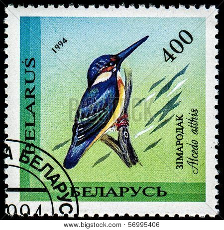 BELARUS - CIRCA 1994: A stamp printed in Belarus shows Alcedo atthis (Kingfisher), circa 1994