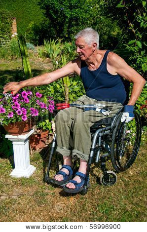 Gardening In Wheelchair