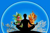 picture of four  - Female yoga figure in a sphere with 4 different branches representing 4 seasons of the year  - JPG