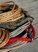 image of buckaroo  - rope - JPG