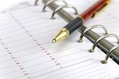 pic of pen  - blank personnal  time planner and pen on ring binder