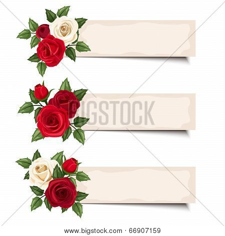 Three vector banners with red and white roses.